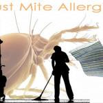 Zákeřné a stále častější alergie